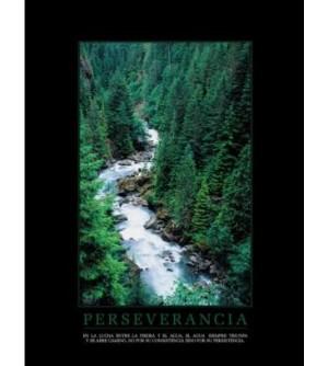 Cuadro Perseverancia